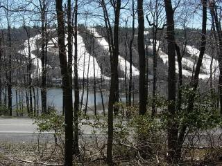 View of the Lake & Ski Slopes