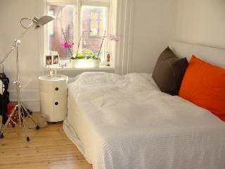 Stylish Copenhagen apartment close to Oesterport Station, Copenhague