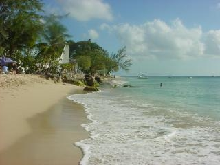 Low tide on the sandy coral beach, on the West  coast, the calm Caribbean Sea .