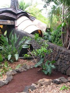 Some endangered Hawaiian plant species are featured in the gardens.