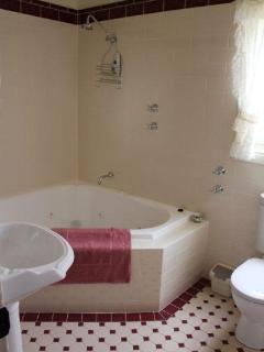 Bathroom with 2 person corner spa