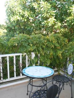 Enjoy looking  over the trees from your secret balcony