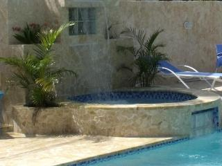 PALMAS VACATION RENTALS / BLUEFISH VILLA, Aguadilla