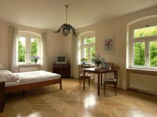 Single Room in Dresden - 312 sqft, elegant, nice, comfortable, Elbe river views (# 404)