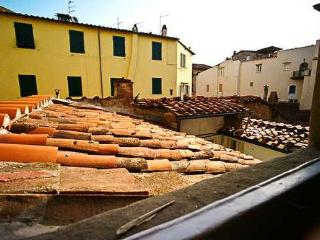 View from our landing over Lucca's colorful rooftops.