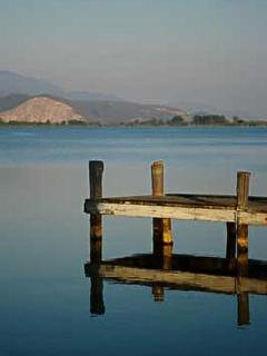 Visit gorgeous Torre De Lago, or Tuscany's coast is just 15 mins away!