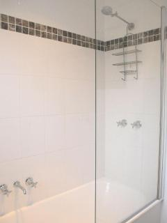 Newly renovated shower and bathtub
