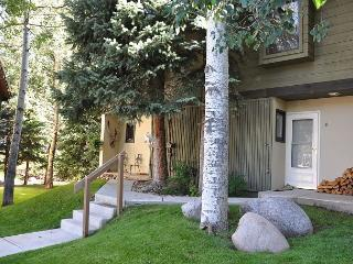 Very nice remodeled Gold rated home on the Gore Creek. 3 bedrooms with a loft, Vail