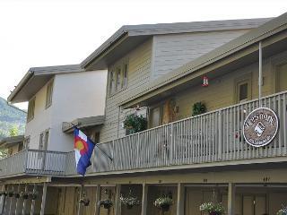 Lionsmane 601 remodeled 2 bedroom 2 bathroom condominium, Vail
