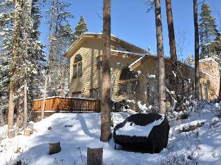 4074 Bighorn Road - Spectacular Duplex in East Vail