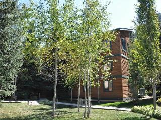 Timber Falls Three bedroom two bathroom remodeled condo in East Vail