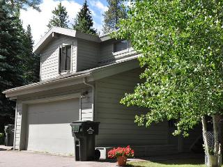 Lovely Creekside Home in East Vail