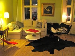 Large Copenhagen apartment close to S-train station