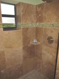 Interior shower in main level master suite