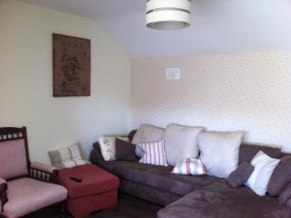Spacious 1 Bedroom Apartment to sleep 4-5, Naas