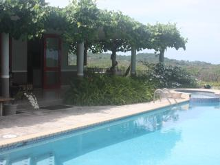 Salt water pool and grape covered terrace