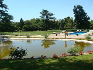 View of the 2ha park