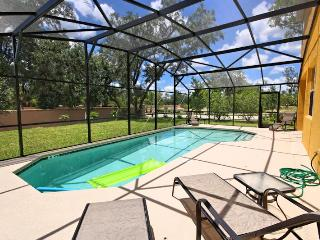 Extended Pool Area with Conservation View