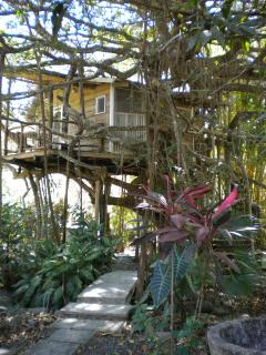 Bridge walk-way to Tree House