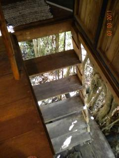 View of stairs/door leading in and out of Tree House