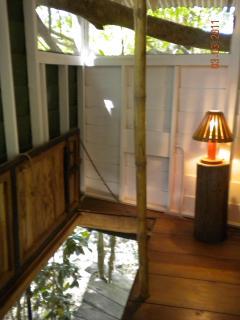 The door-in-the-floor