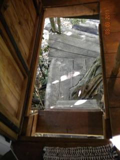 View down the stairs out of tree house