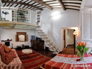 Charming attic Navona Sq panoramic terrace Wifi