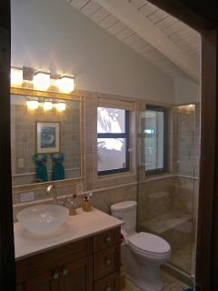 Bathroom view showing vaulted ceiling, shower and sink