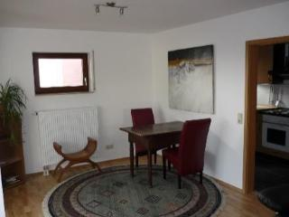 Vacation Apartment in Tübingen - 463 sqft, quiet, comfortable (# 2198), Tubinga