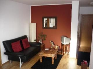 Vacation Apartment in Tübingen - 463 sqft, quiet, comfortable (# 2198)