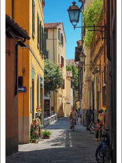 Pisa's old street