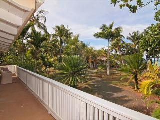 2bdr /1 bath + loft, in lush jungle setting and just steps to the ocean!