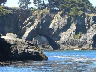 Breathtaking Oceanfront Views!  Beach Access, Mendocino