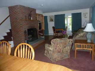 Birch Glen House  Living Room