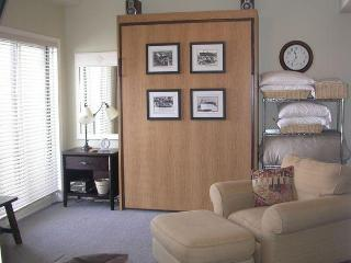 Murphy Bed & Living Room