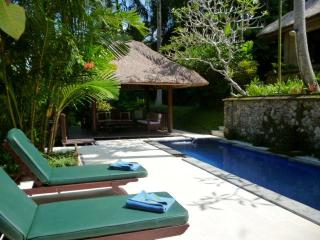 Your private pool and sitting bale/open air space
