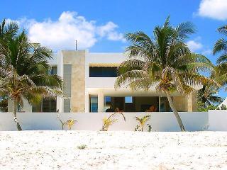 Casa Roccio's, Progreso