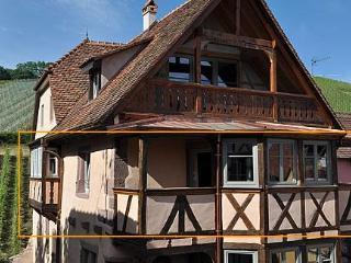 Circular views on vineyards & old roofs - Alsatian Hart ***** -