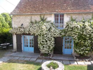 La Lavande 1 bedroom gite in 18th C farmhouse, Vienne