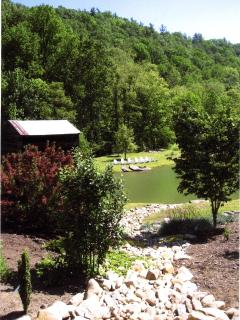View from Cabin of Spring Fed Pond
