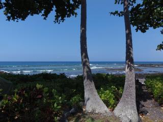 View from Lanai of KKSRC #5, Definitely Oceanfront!