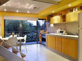 Brand New 2 Bedroom Apartment in Palermo Soho, Buenos Aires