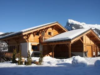Chalet APASSION in the snow