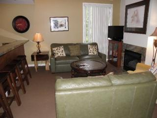 Living Area w/ Flatscreen TV and Pull Out Sofa