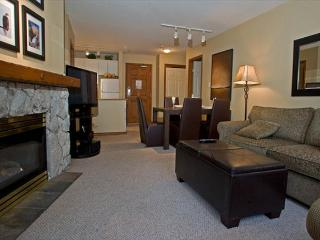 Aspens #239, Spacious 2 Bdrm, Ski-in Ski-out, Free Wifi, BBQ, Whistler