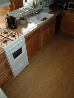 Gas oven, large refrigerator