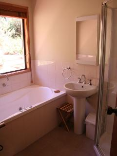 Bathroom with spa and shower