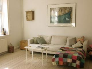 Nice Copenhagen apartment close to Noerrebro station, Copenhague
