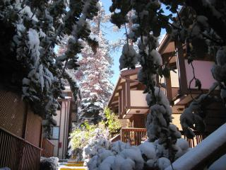 Stylish 2BR, WiFi, HDTV, Walk2Lifts, Parking, Big Bear Region