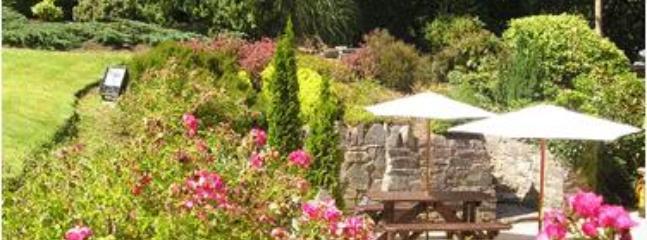 South facing garden and patio area